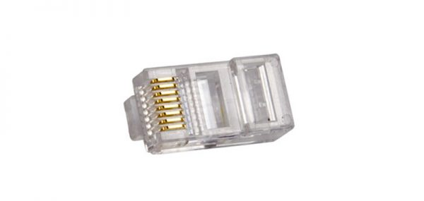 Single RJ-45 Cat-5 Connector, clear casing with brass connectors