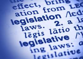 "Dictionary screenshot of the word ""legislation"""