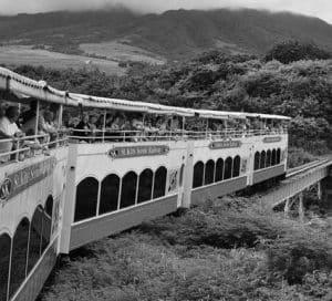 St. Kitt's train tour through the rainforest.