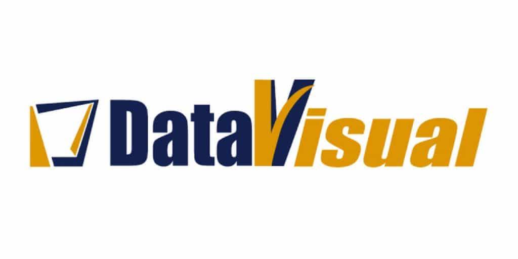 Data Visual Logo in color